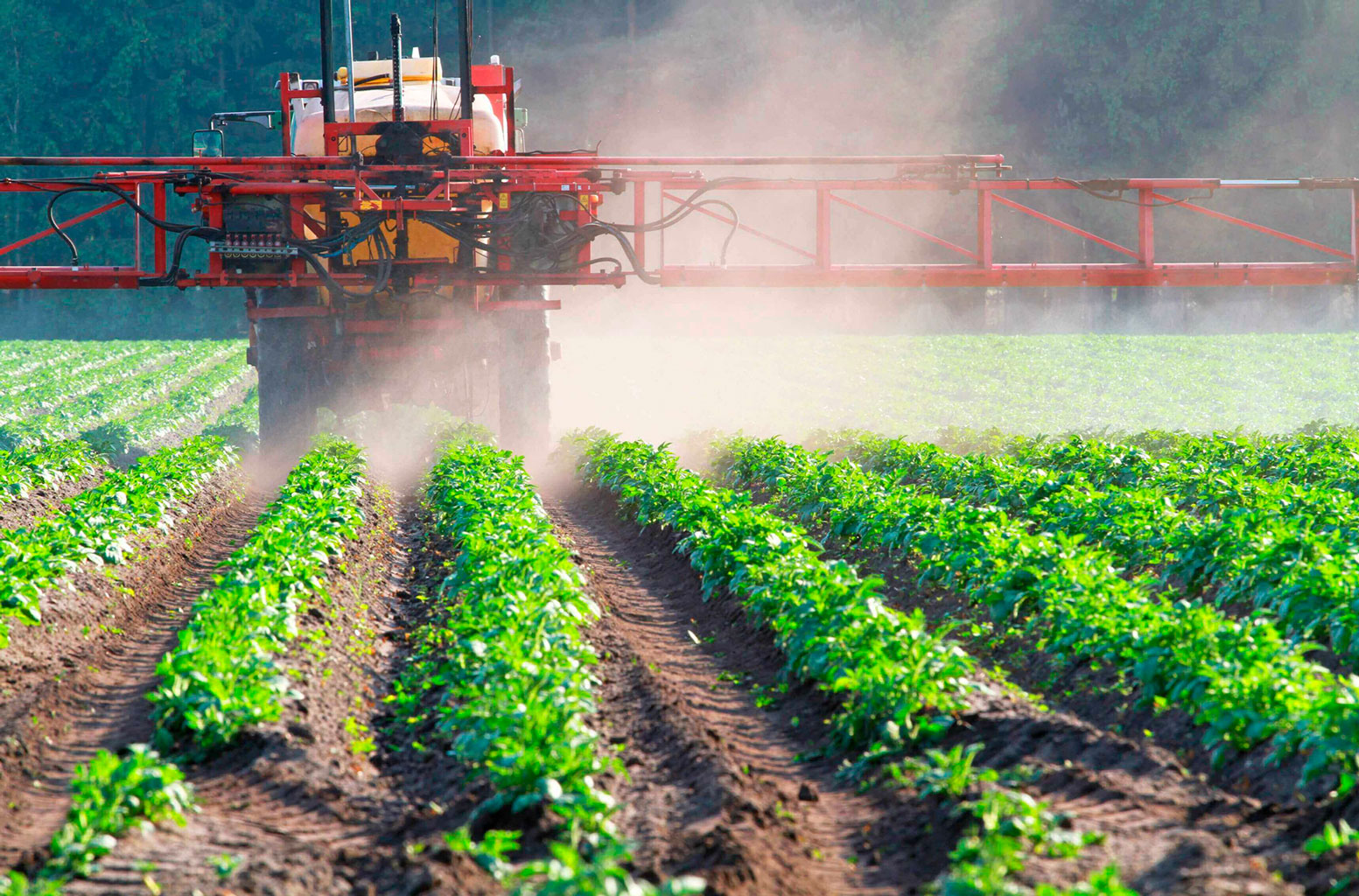 Agro-agroativa-Avaliação-do-glifosato-tem-que-ir-além-da-possibilidade-de-câncer