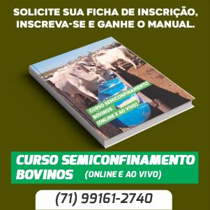Semiconfinamento